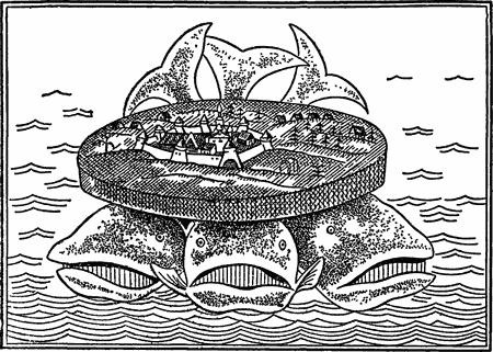 3 кита: