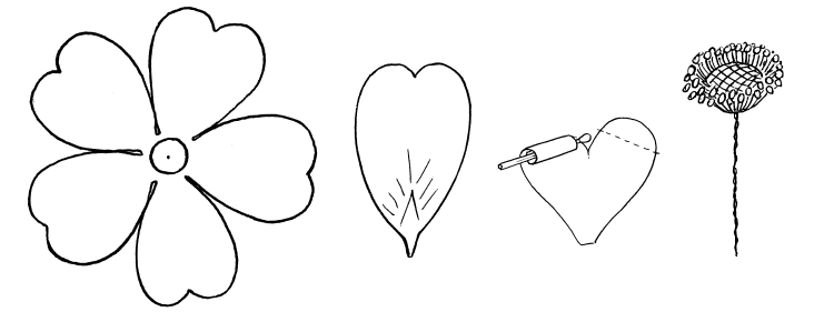 Цветок простой